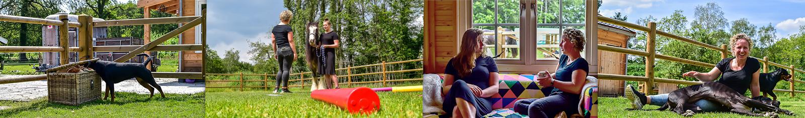 Kracht op Poten - CREF-therapie met honden en paarden, in Twente